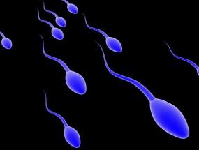 (g)Surgical Sperm Retrieval and Freezing (MESA / TESA)